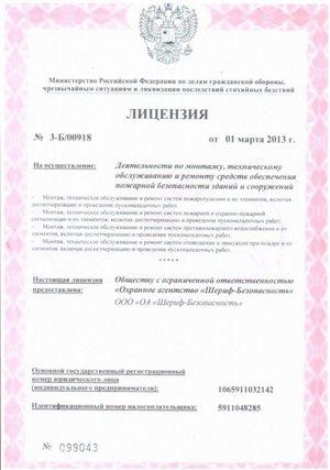 Лицензия (стр.1)